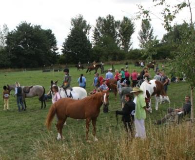 Abingdon Horse Show