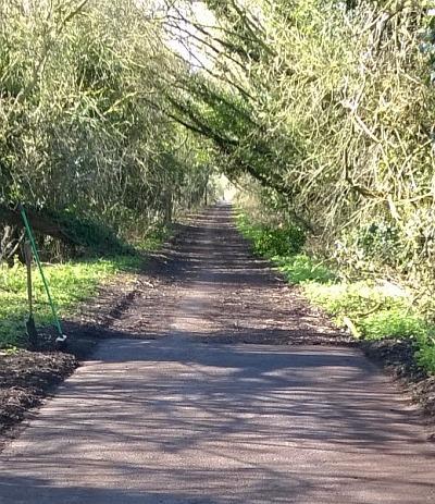 Peep-O-Day Lane