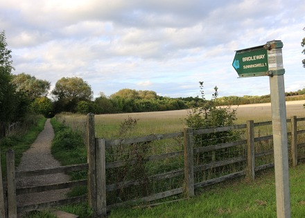 Bridleway to Sunningwell