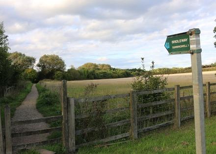 Bridleway to Sunningwell