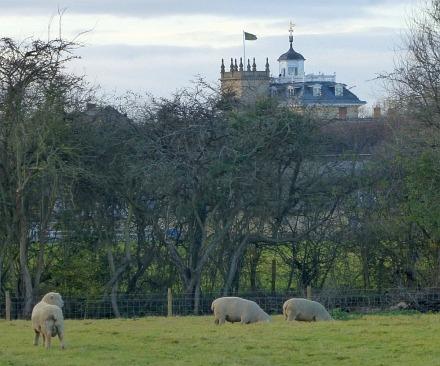 Abingdon Lock in November