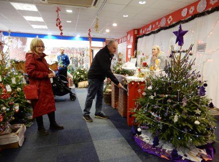 Abingdon Christmas Tree Festival