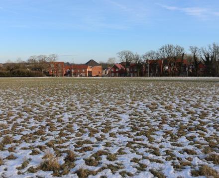 Masefield Crescent field
