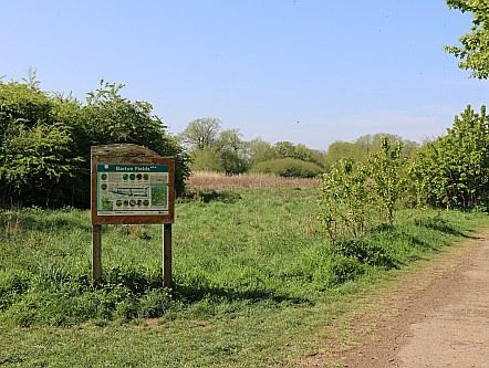 Barton Fields in April