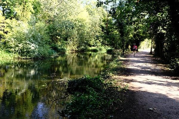Cycle Path through Abbey Meadows