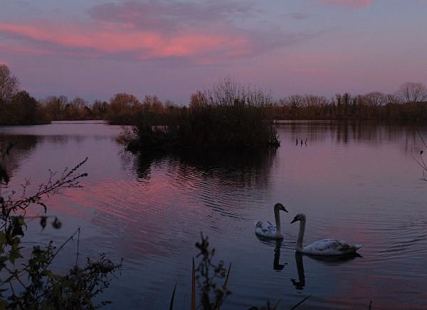 Radley Lakes