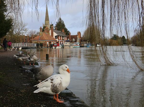 Abingdon floods